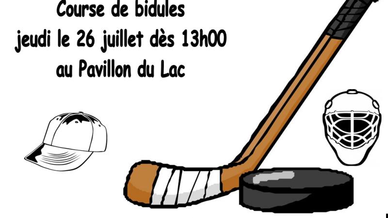 bidules